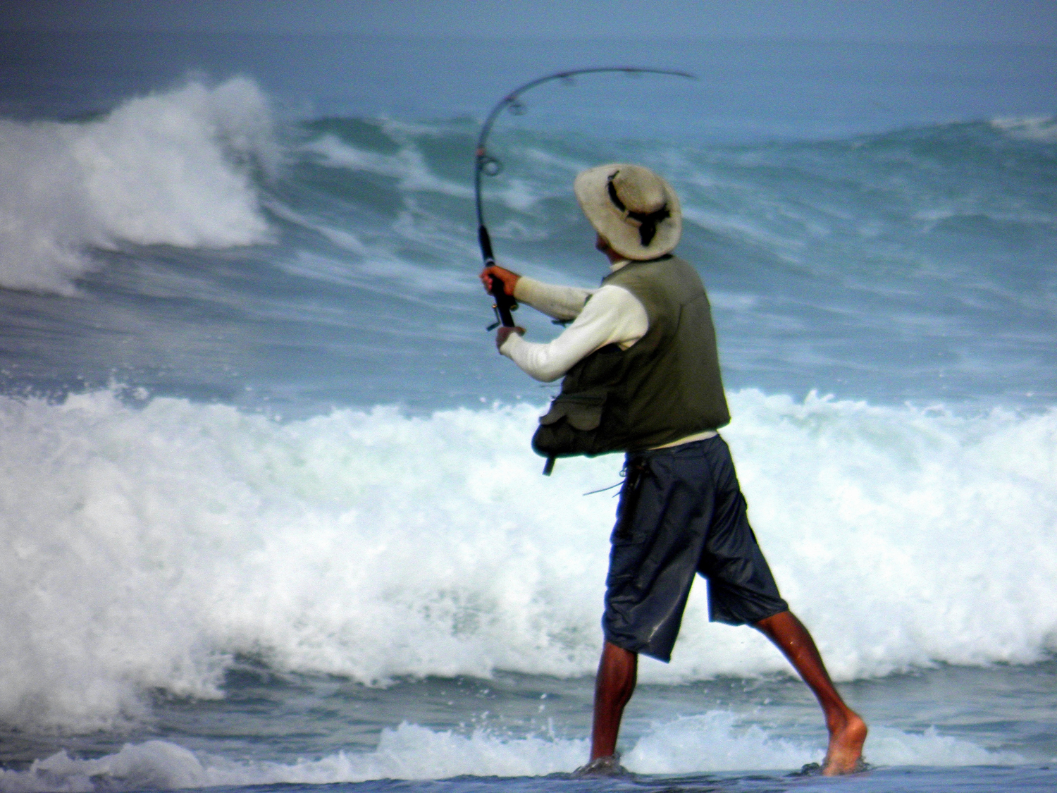 Sharks close beach after dangerous humans spotted in the water for Surf fishing for sharks