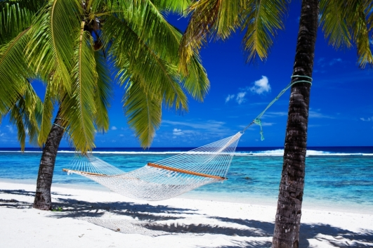 stockfresh_1133110_hammock-between-palm-trees-on-tropical-beach_sizeS