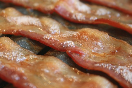 Is-anything-better-than-bacon...no_